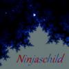 Ninjaschild